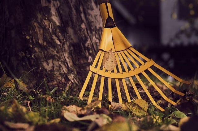 grabljenje listov