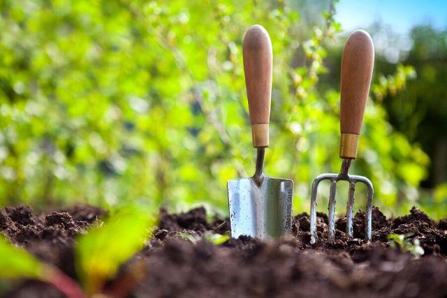 priprava vrta